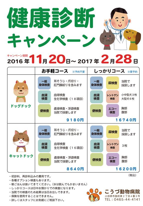 kenkousindan2016